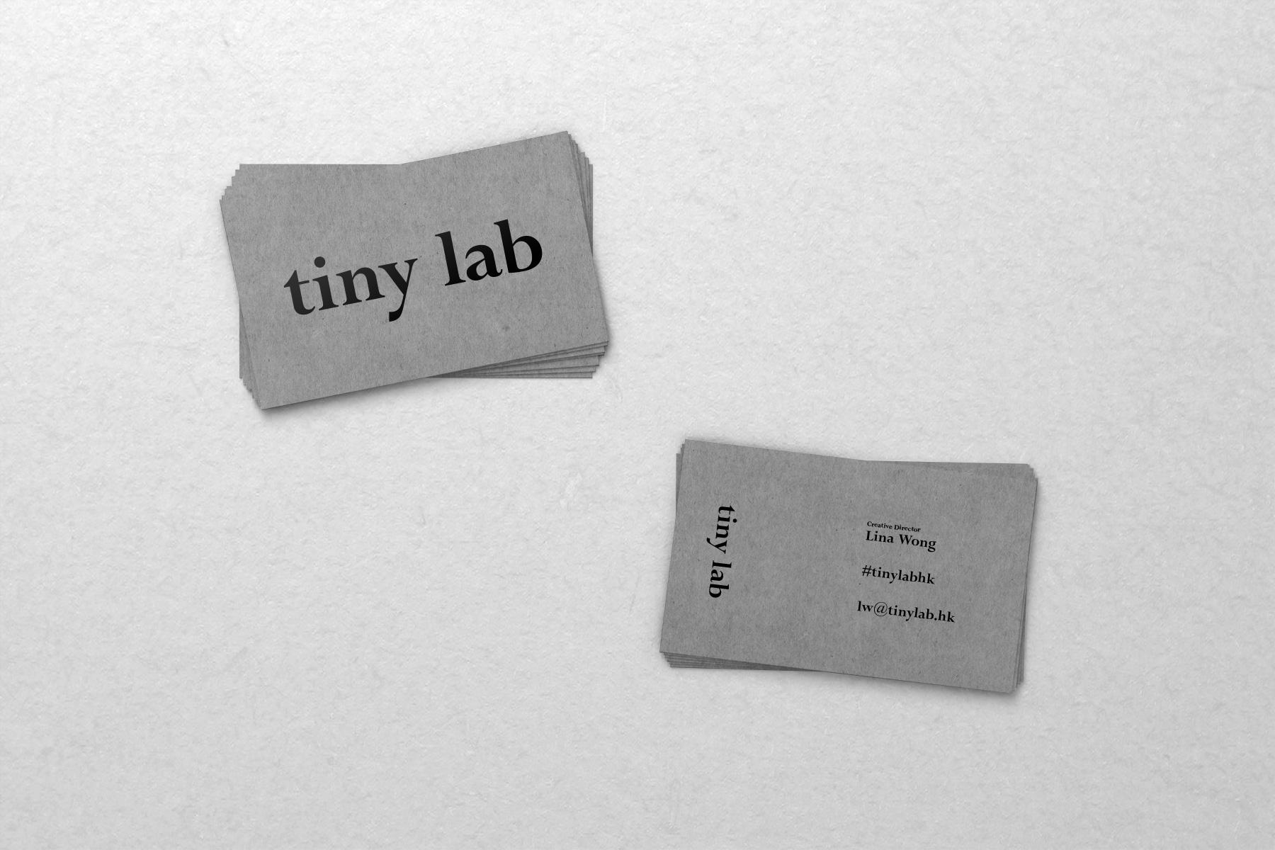 tinylab-01